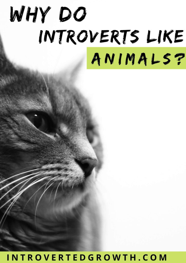Introverts like animals